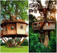 treehouse furniture ideas. Winning Tree House Floor Plans For Adults Paint Color Creative And Treehouse Furniture Ideas