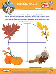 Fall Color Wheel From Nature Cat