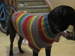 Free Knitted Dog Sweater Patterns Interesting Ravelry The Ozzie Large Dog Sweater Pattern By Jenna Greer
