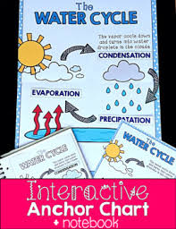 Interactive Anchor Chart Interactive Notebook Water Cycle