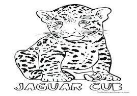 Baby Leopard Coloring Pages Best Free Printable Jaguar Coloring