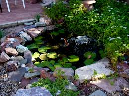 garden landscaping: Wonderful Ornament In Small Pond Like Pool Using Stone  Border And Green Leaves