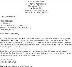 Sample Activities Director Cover Letter Account Executive Cover