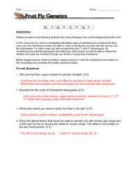 fruit fly genetics answer key 2 oise is biology 2011 2012