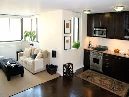 Modern Small Living Room Design Picture Of Modern Small Apartments Design Living Room Kitchen Combo