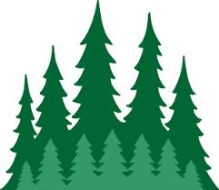 Image result for evergreen tree border cartoon