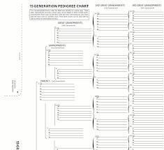 20 Generation Pedigree Chart Genealogy Charts