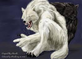 black wolf and white wolf love. Brilliant White White Wolf Black Love By Rwolf  Inside And F