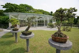 bonsai gardens. sbg tc - bonsai garden gardens r