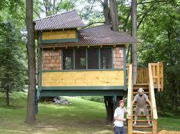Modern Tree Houses Backyard Tree House