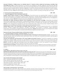 Internal Auditor Resume Objective internal auditing resume arielime 54