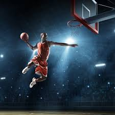 Furman Paladins Basketball Tickets