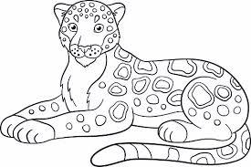 510x339 printable jaguar pictures jaguar take a rest coloring pages