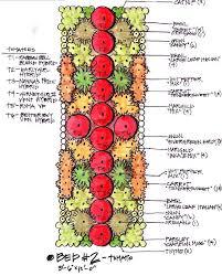 biointensive gardening