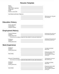 Underwriter Resume Sample Auto Underwriter Resume Troankcom Best resume  example blank resume form to fill out