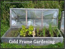 cold frame gardening.  Gardening To Cold Frame Gardening