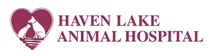 Dental Release Form | Haven Lake Animal Hospital
