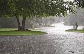 Bakıda yağış yağacaq, şimşək çaxacaq