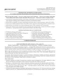 Cover Letter Executive Resume Example One Page Executive Resume