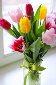 La migliori immagini di fiori di compleanno. Fiori Per Compleanno Ad Ognuno Il Suo Fiore Di Buon Compleanno