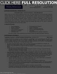 Certified Resume Writer Resume Templates