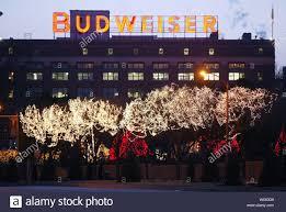 Budweiser Christmas Lights Over One Million Christmas Lights Illuminate The Trees At