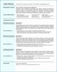 Business Plan Resume Sample Unique Financial Advisor Resume Samples