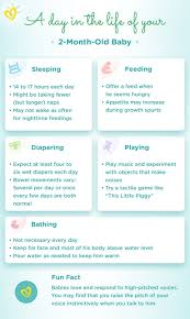 16 Month Old Baby Diet Chart Heavy 16 Feeding Chart Management For Freshwater Fish Culture
