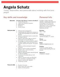 Resume Sample For First Job Working Student Resume Sample High ...
