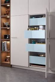 Modern Kitchen Pantry Cabinet 25 Best Ideas About Modern Kitchens On Pinterest Modern Kitchen