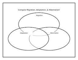 Venn Diagram Comparing Dna And Rna Venn Diagram For Migration Adaptation Hibernation