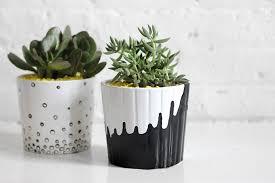 diy succulent plant 11 these painted pot