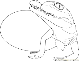 Small Picture Baby Crocodile Hatchling Coloring Page Free Crocodile Coloring