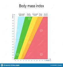Health Chart For Men Body Mass Index Bmi Weight Height Chart Stock Vector