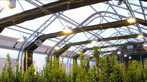 Automated Light Deprivation 30 X 80 Weatherport Growport Automated Light Deprivation Greenhouse In 4k
