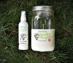 Bundle Special: Insect Repellent Soy Candle Glass Jar with   Etsy