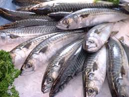 Image result for ikan sardin omega 3