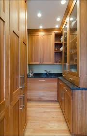 Full Size Of Kitchen:kitchen Pantries Ikea Pantry Cabinet Home Depot  Freestanding Pantry Home Depot ...