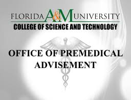 Famu Graphic Design Curriculum College Of Science And Technology Florida Agricultural And
