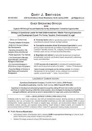 Executive Driver Job Description Chief Operating Officer Job ...