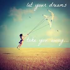 Dream To Fly Quotes