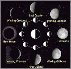 Phases Of The Moon Chart For Kids Moon Phases Diagram Space Astronomy Pictures Photos