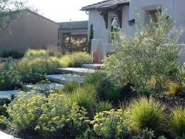 wildlife garden design tip use less