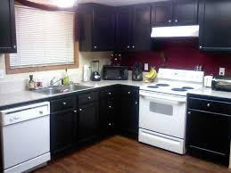 kitchens with dark painted cabinets.  With Amazing Of Black Painted Kitchen Cabinets 14 9438 For Painting Kitchen  Cabinets Black With Regard To To Kitchens With Dark T