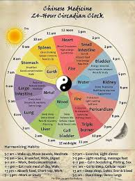 Five Element Theory American Wudang
