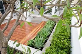 serene indoor garden design