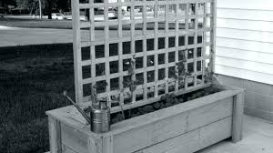 planter boxes with lattice box elegant planters trellis top ideas about pertaining to cedar planter boxes with lattice