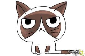easy grumpy cat drawing. Modren Easy How To Draw A Grumpy Cat  Step 10 And Easy Drawing