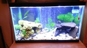 Cool Aquariums For Sale Fish Tank Gallon Fish Tank For Sale Maxresdefault Acrylic Aquarium