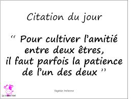 Citation Du Jour 17 Mai 2015 La Vache Rose